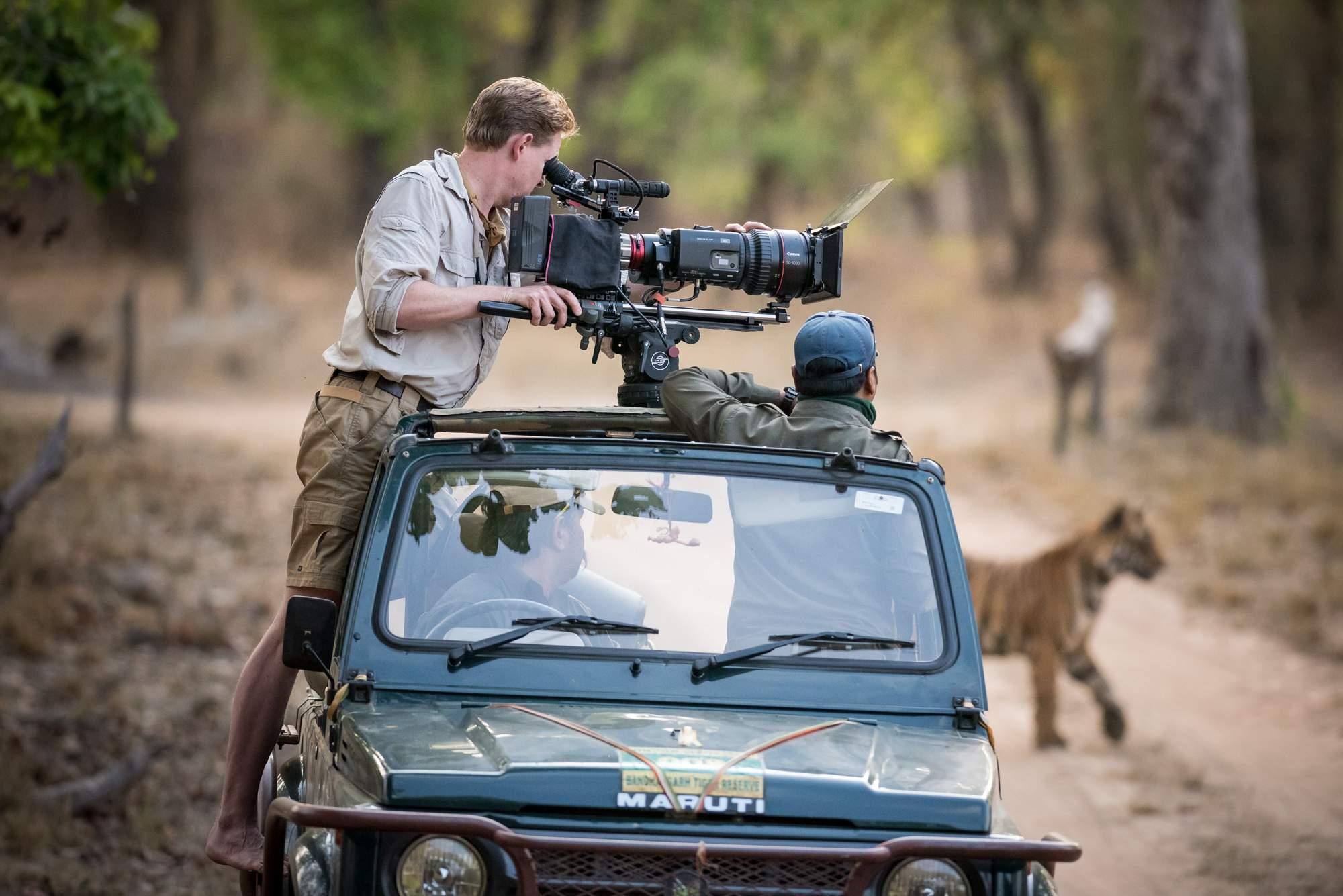 wildlife cameraman