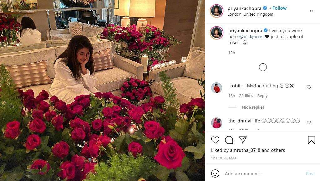 Nick Jonas sends Priyanka Chopra Jonas roses for Valentine's Day