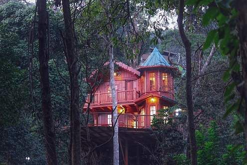 Forestvalley Tree House Coorg in Karnataka
