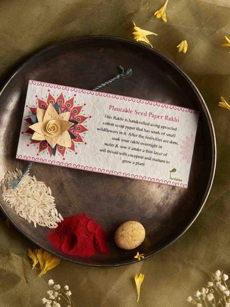 seed-plantable-rakhi