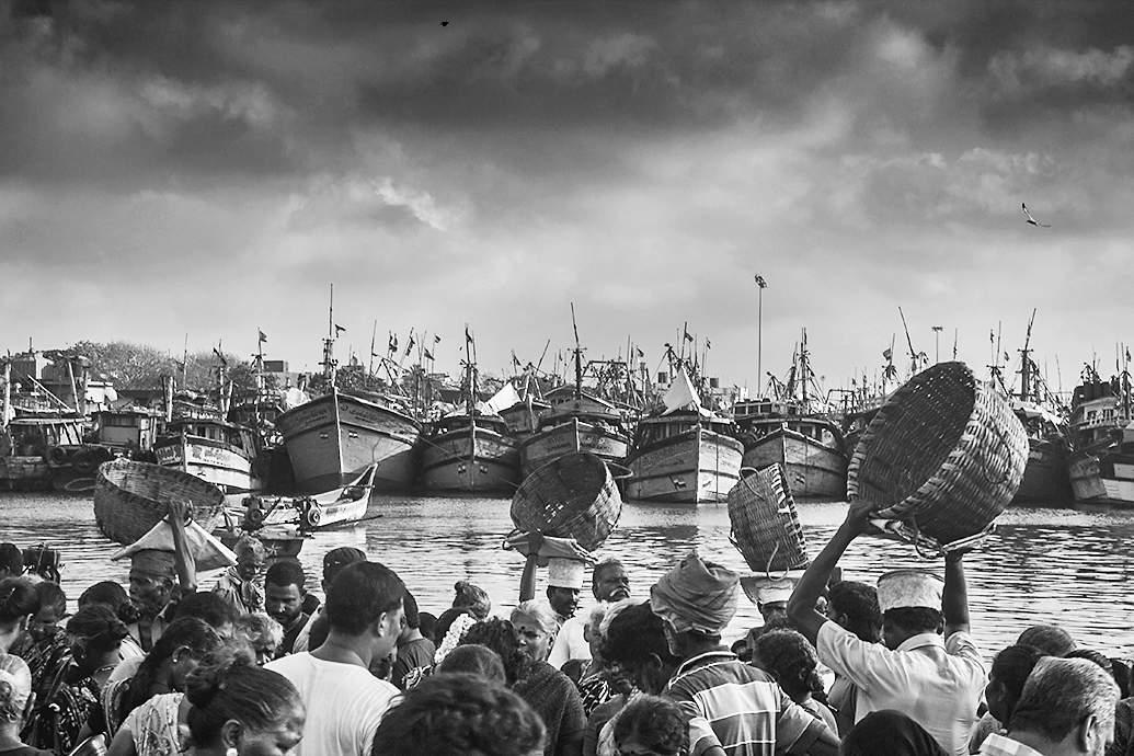 At Kasimedu Fishing Harbour by Arun Veerappan