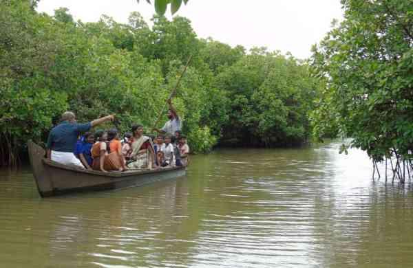 Boat_journey_in_the_WTI_plot