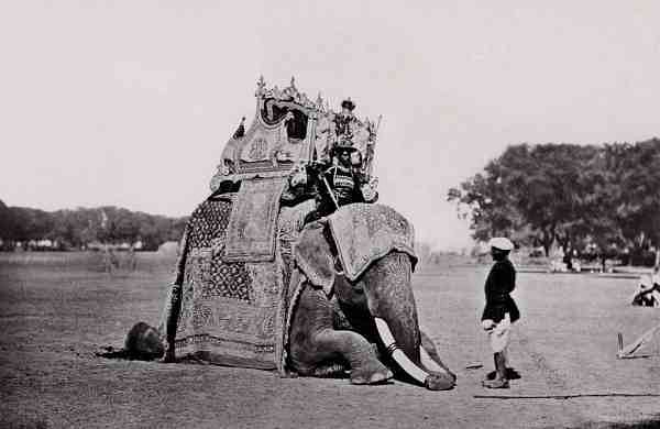 His Eminence, The Viceroy's Elephant, Delhi Durbar, 1877