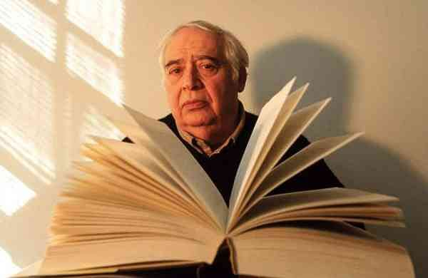 Harold Bloom (Source: Internet)