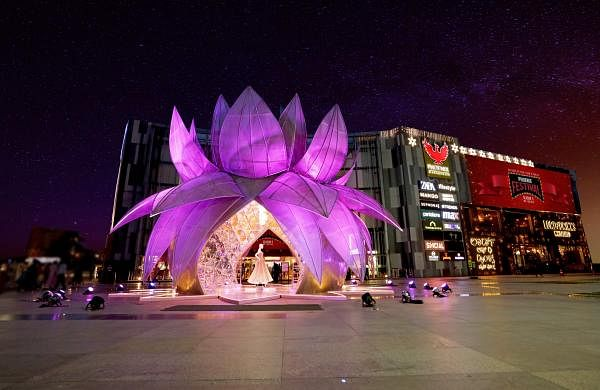 Pic_4_Grand_Crystal_Lotus