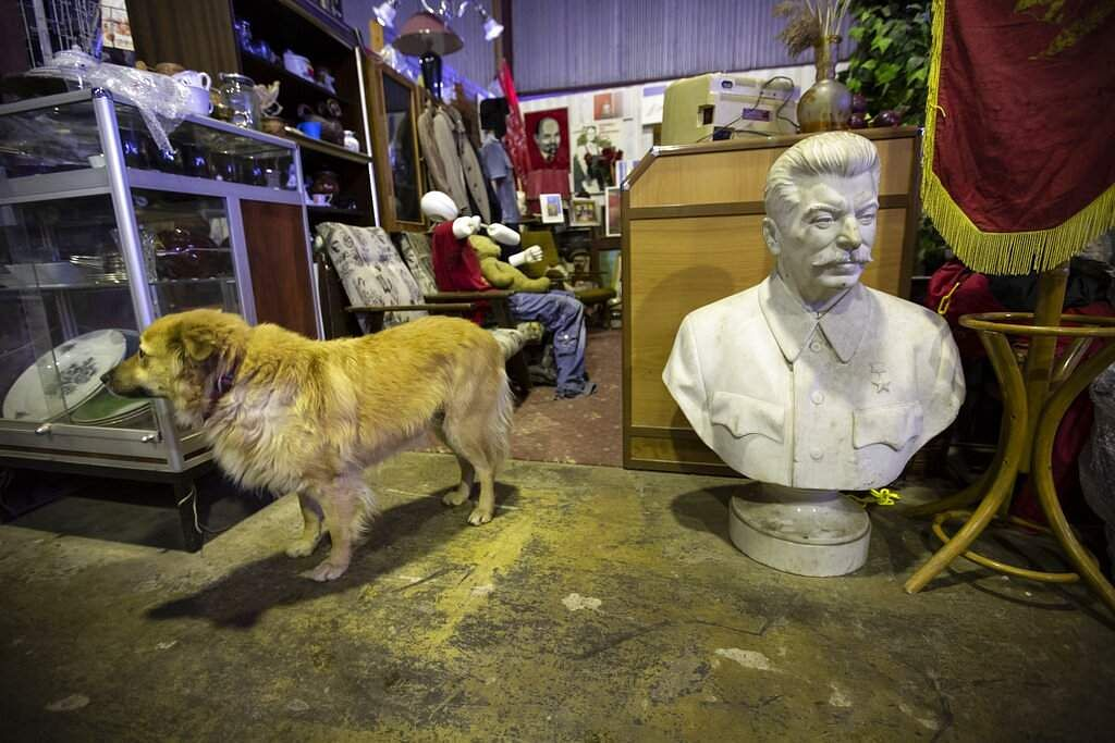 A dog walks past a bust of of Soviet leader Josef Stalin at the Museum of Industrial Culture in a dilapidated industrial zone of Moscow, Russia. (AP Photo/Alexander Zemlianichenko)