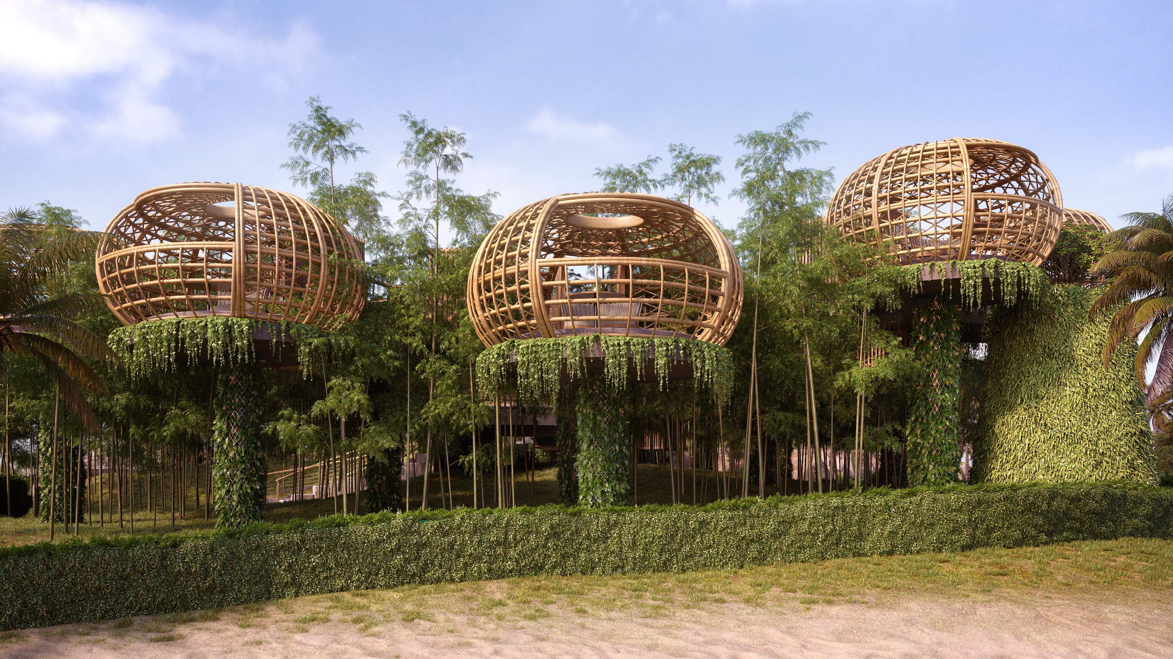 Waldorf Astoria Maldives Ithaafushi - Terra