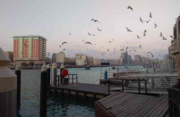 The Dubai Creek. Picture: Ayesha Tabassum