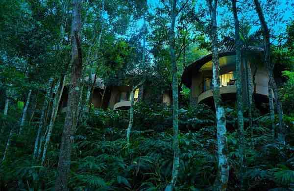 Poetree Sarovar Portico at Thekkady is perfect for nature lovers and adventure junkies looking to va