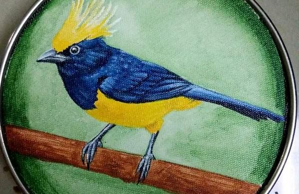 Painted Creatures art exhibition at DakshinaChitra