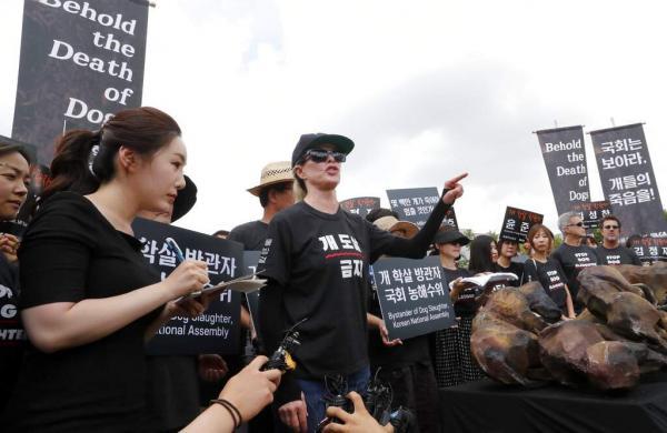 Kim Basinger in Seoul