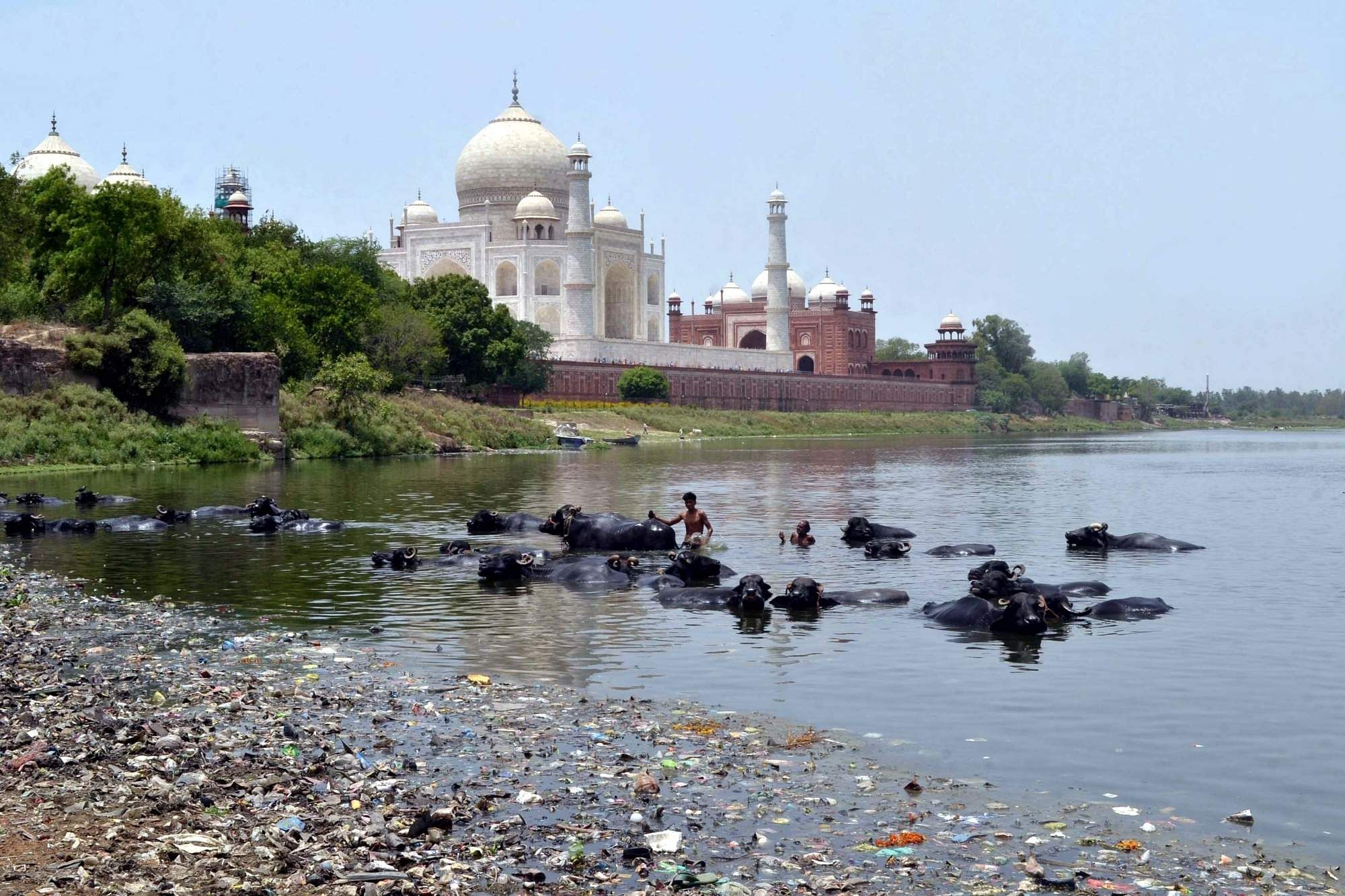 A view of Yamuna River (File Photo: IANS)