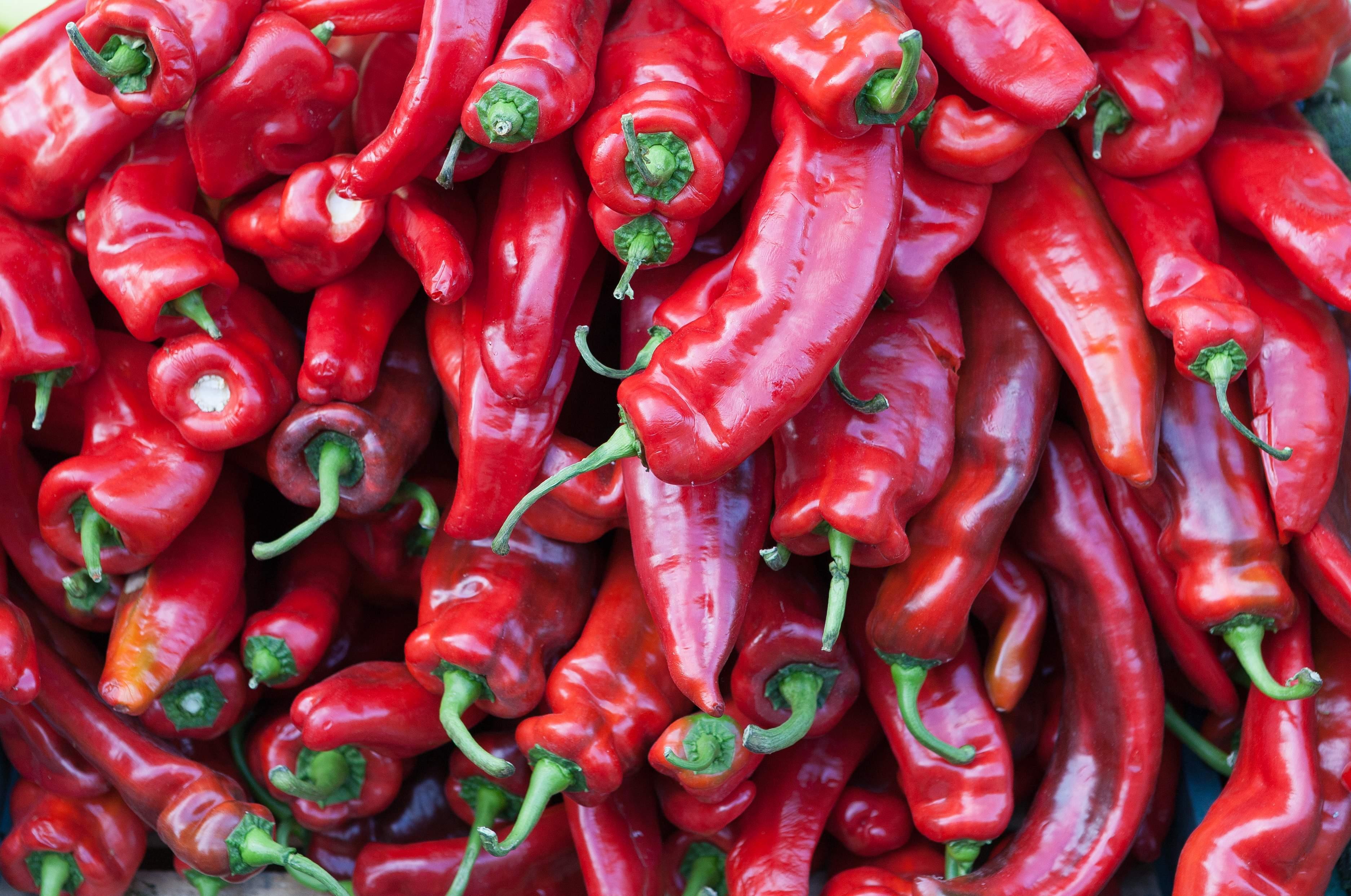Chilli peppers (Photo: Wikipedia)