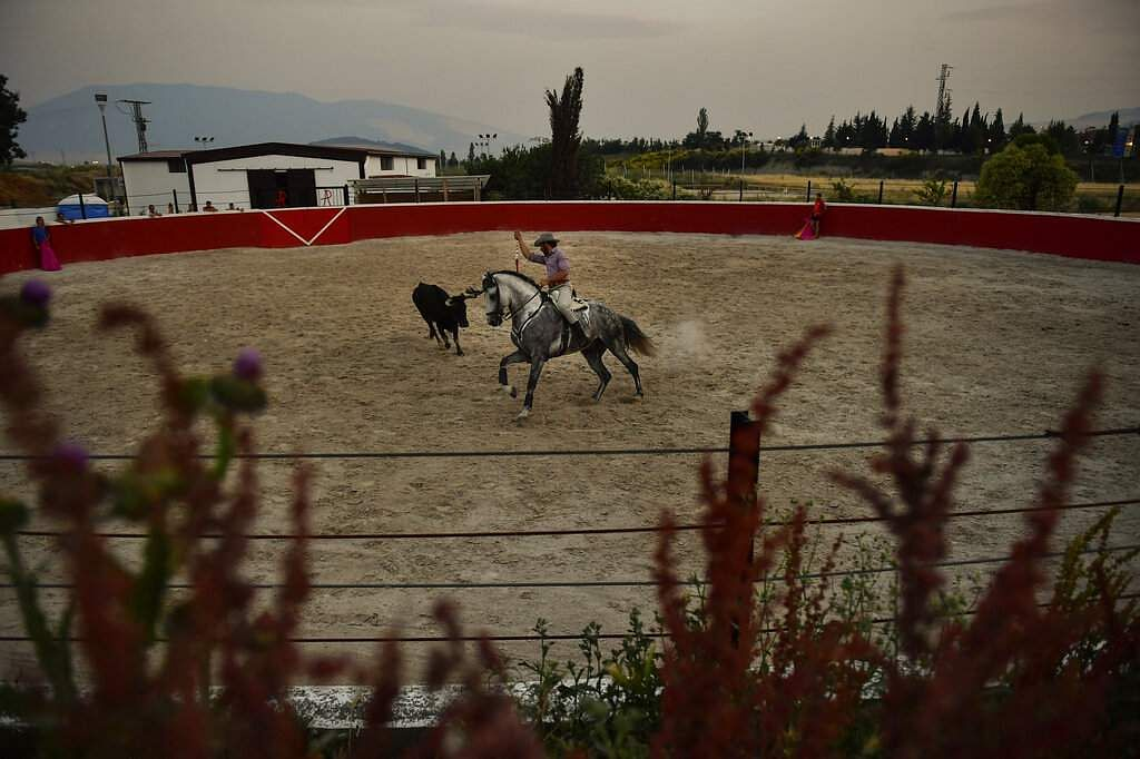 Roberto Armendariz at his ranch in northern Spain. Those who love bullfighting consider it a skilled art form, others see it as a cruel, bloody crime for entertainment. (AP Photo/Alvaro Barrientos)