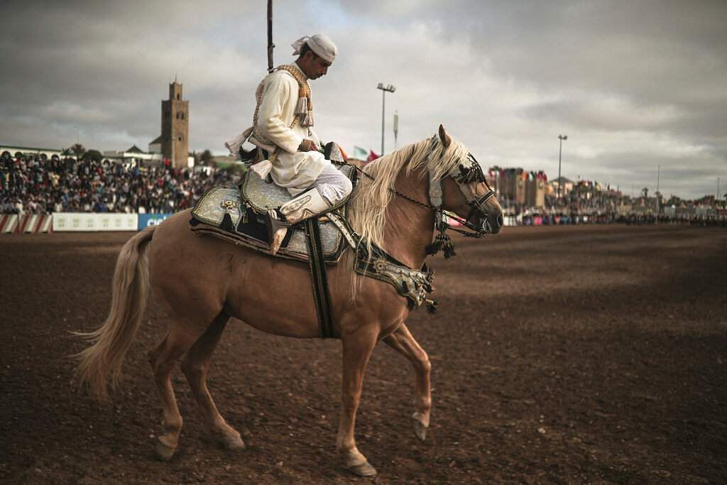 A horse rider prepares to exit after his troupe took part in Tabourida, a traditional horse riding show also known as Fantasia, in the coastal town of El Jadida, Morocco. (AP Photo/Mosa'ab Elshamy)