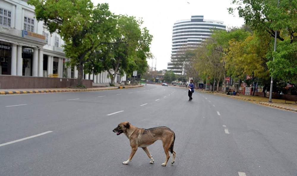 New Delhi: A dog strolls around a deserted street in Delhi's Connaught Place during the complete nationwide lockdown to contain the spread of the coronavirus. (Photo: IANS)