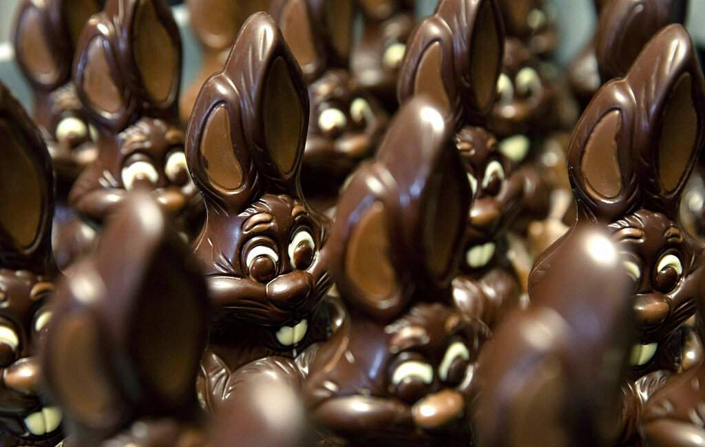 Chocolate rabbits wait to be decorated at Cocoatree in Lonzee, Belgium. Many chocolatiers have resorted to online sales, home delivery or pick up on site during lockdown. (AP Photo/Virginia Mayo)