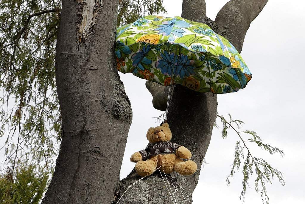 A teddy bear sits in a tree in Christchurch. New Zealanders are embracing a global movement in which people place teddies in their windows to brighten the mood. (AP Photo/Mark Baker)