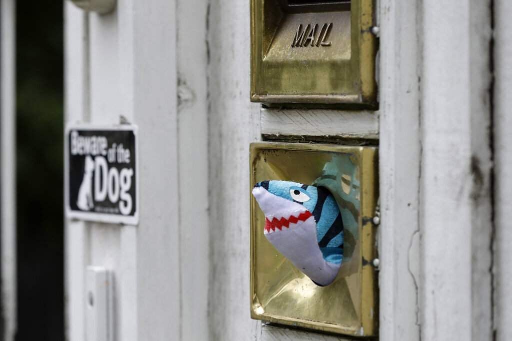 A soft toy in a letterbox at a house in Christchurch. New Zealanders are embracing a global movement in which people place teddies in their windows to brighten the mood. (AP Photo/Mark Baker)