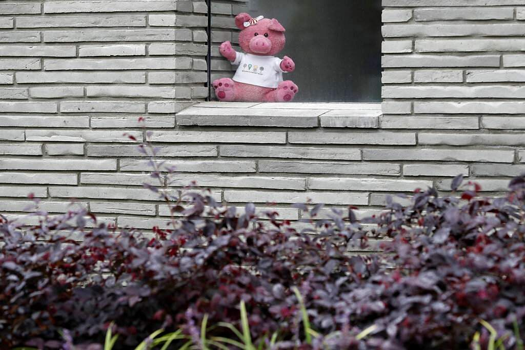 A teddy bear in a house in Christchurch. New Zealanders are embracing a global movement in which people place teddies in their windows to brighten the mood. (AP Photo/Mark Baker)