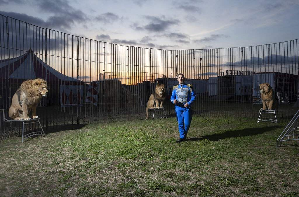 Rony Vassallo poses for a portrait with his lions at the Rony Roller circus. 'It is strange for me to be with the lions in this silence, this darkness,' he says. (AP Photo/Alessandra Tarantino)