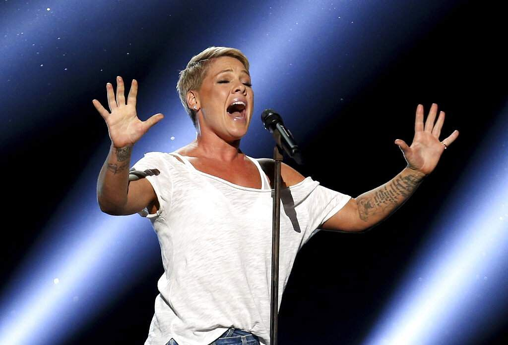 Pink (Photo by Matt Sayles/Invision/AP, File)