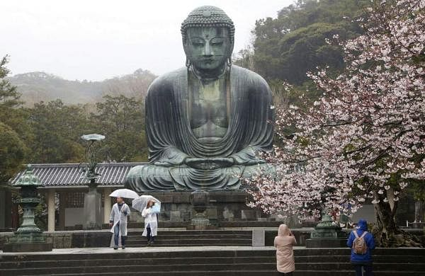 People visit the Kotoku-in Temple to see the Big Buddha and cherry blossoms in Kamakura, near Tokyo. (AP Photo/Koji Sasahara)