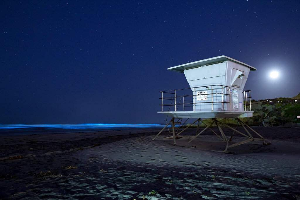 Waves glow with blue bioluminescence from an algae bloom in the ocean waters as a lifeguard tower sits on a closed beach during the lockdown in Del Mar, California. (AP Photo/Gregory Bull)