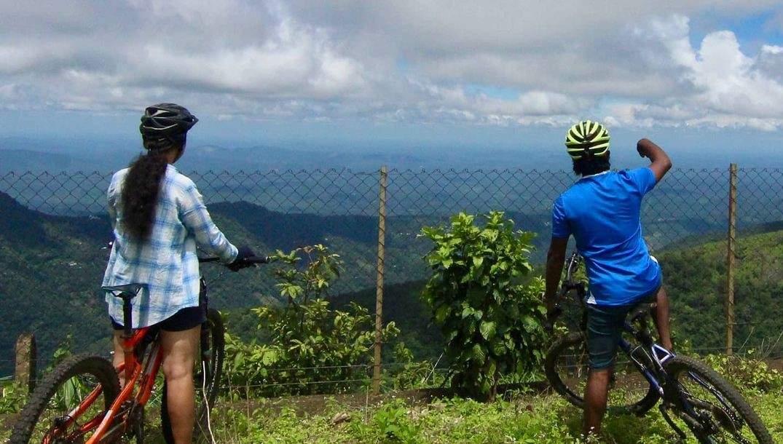 Misty_Mountain_Plantation_Resort-Kerala