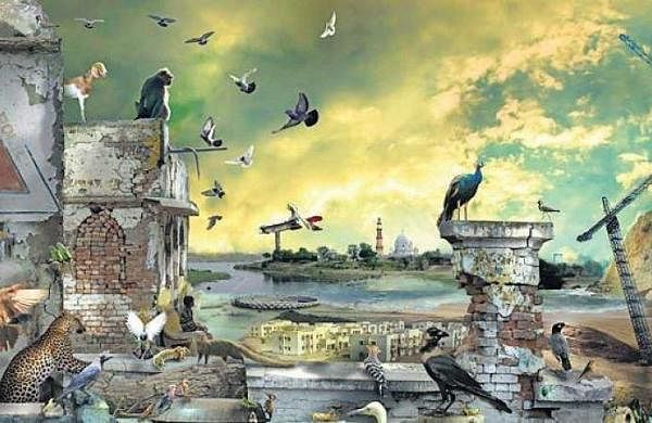 Conference of Birds and Beasts' by Ranbir Kaleka