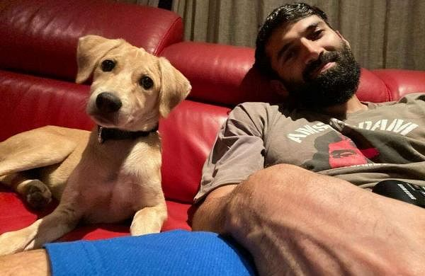 Aditya Roy Pet Luna