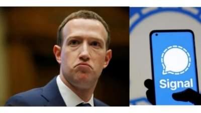 Zuckerberg and Signal