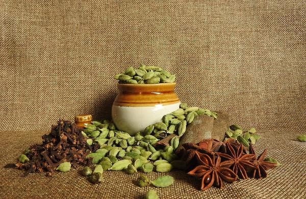 Garam Masalas improve the immune system